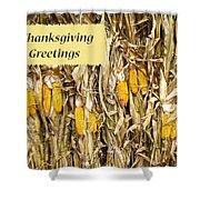 Thanksgiving Greeting Card - Dried Corn Stalks Shower Curtain