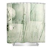 Tharsis Bulge Shower Curtain