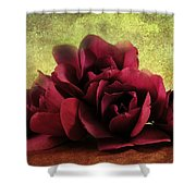 The Artists Palette Shower Curtain