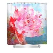 The Aura Of A Peach Blossom Shower Curtain