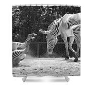 The Back End In Black And White Shower Curtain