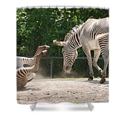 The Back End Shower Curtain