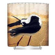 The Ballerina Bird Shower Curtain