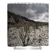 The Bank Of The Nueces River Shower Curtain