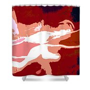 The Baseball Pitcher Shower Curtain by David Lee Thompson