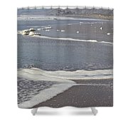 The Beach In January Shower Curtain