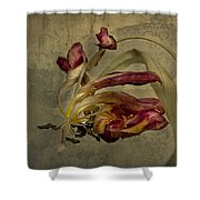 The Beauty Never Dies Shower Curtain