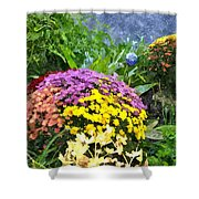 The Beauty Of Fall Bofwc Shower Curtain