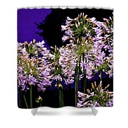 The Beauty Of Flowering Garlic Shower Curtain