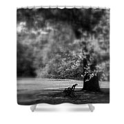 The Bench In The Park Shower Curtain