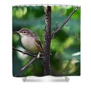 The Best Singer Of The Woods And Fields Shower Curtain