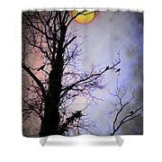 The Black Crows Shower Curtain