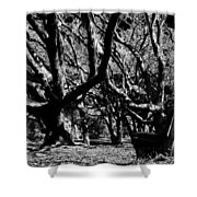 The Black Forest Shower Curtain