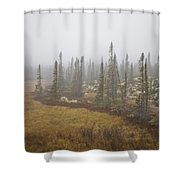 The Boreal Forest On A Foggy Day Shower Curtain