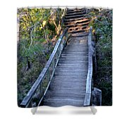 The Bridge Path Shower Curtain