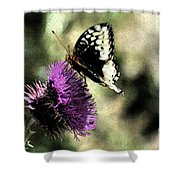 The Butterfly II Shower Curtain