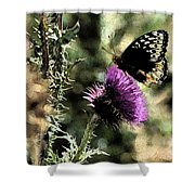The Butterfly IIi Shower Curtain