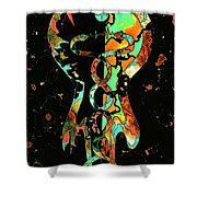 The Caduceus Shower Curtain