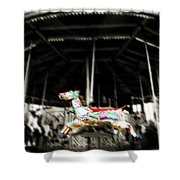 The Carousel Horse Shower Curtain