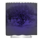 The Circle Violet Tree Shower Curtain