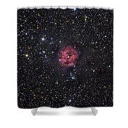 The Cocoon Nebula Shower Curtain by Roth Ritter