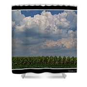The Corn Is Thirsty Shower Curtain