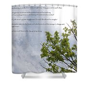 The Crooked Tree Shower Curtain