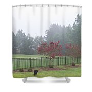 The Curious Dog Shower Curtain