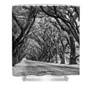 The Deep South Monochrome Shower Curtain