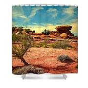The Desert And The Sky Shower Curtain