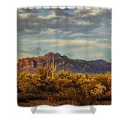 The Desert Golden Hour  Shower Curtain