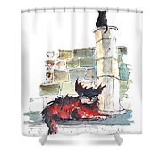 The Devils Advocat Shower Curtain