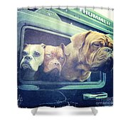 The Dog Taxi Is A Hummer Shower Curtain by Nina Prommer
