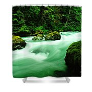 The Dosewallups River  Shower Curtain