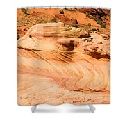 The Dragon At The Wave Shower Curtain