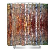 The Dream Forest Shower Curtain