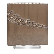 The Dry Colorado River Delta Stands Shower Curtain