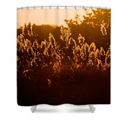 The Dunes- Fire Island Shower Curtain
