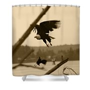 The Eagle Flies With The Crow Shower Curtain
