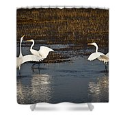 The Egrets Shower Curtain
