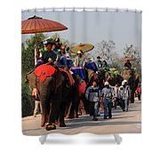 The Elephant Parade Shower Curtain