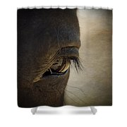 The Eyes Are The Window To The Soul Shower Curtain