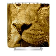 The Face Of God In Sepia Tones Shower Curtain