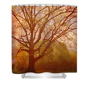 The Fairy Tree Shower Curtain by Brett Pfister