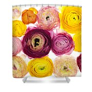 The Family Rununculus Shower Curtain