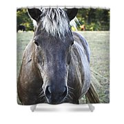 The Farmers Horse Shower Curtain