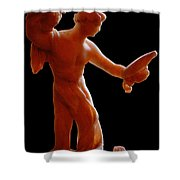 The Figurine Shower Curtain