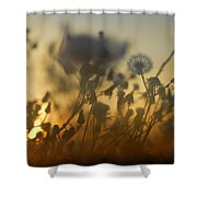 The Fire Of The Sun Shower Curtain