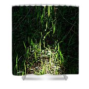 The Flames Of Green Shower Curtain