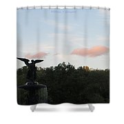 The Flying Angel Shower Curtain